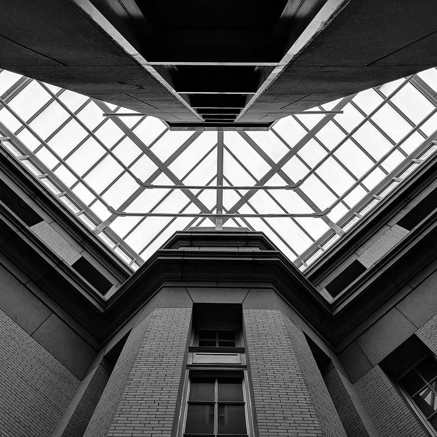 looking-up-sq
